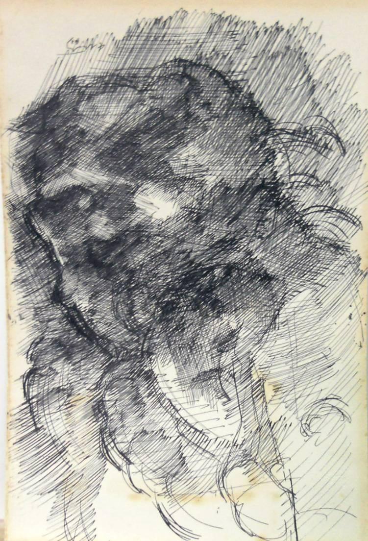 Obra ampliada: Zeus - Juan Martín