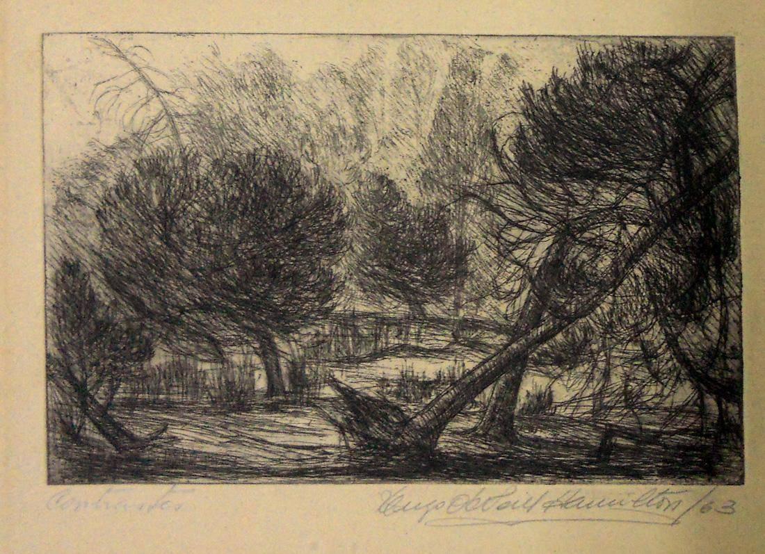 Obra ampliada: Acacias - Hugo O'Neill Hamilton
