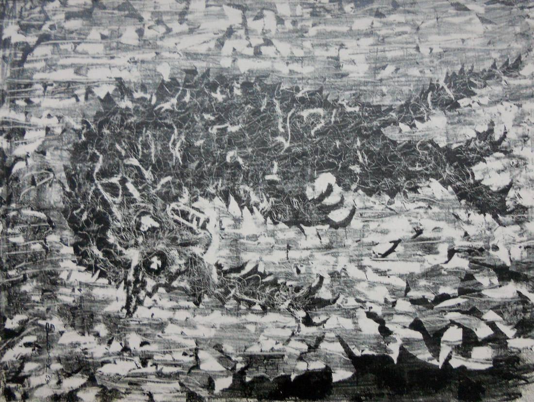 Obra ampliada: Gato cayendo - Ruisdael Suárez