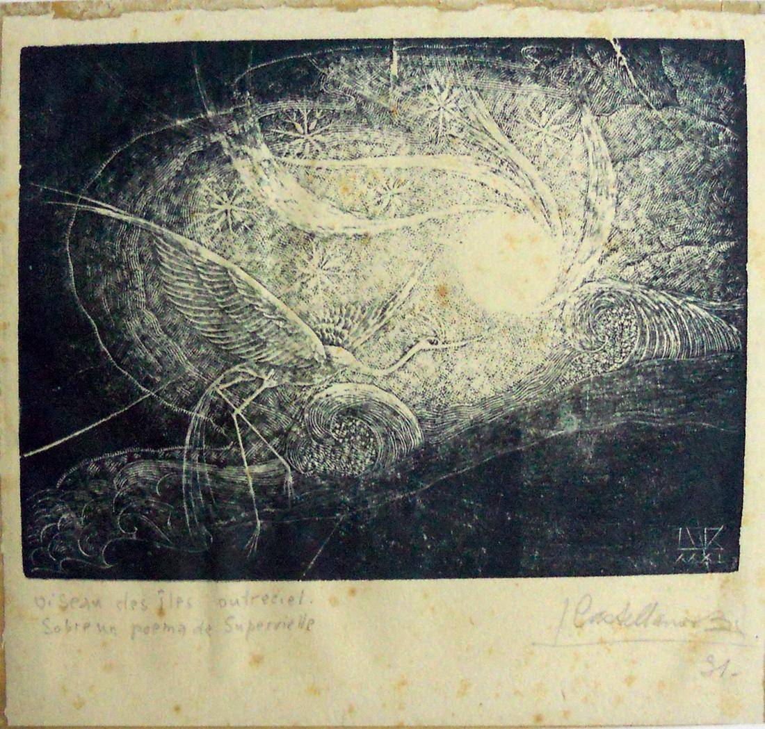 Obra ampliada: Oiseau des îles outreciel - Leandro Castellanos Balparda
