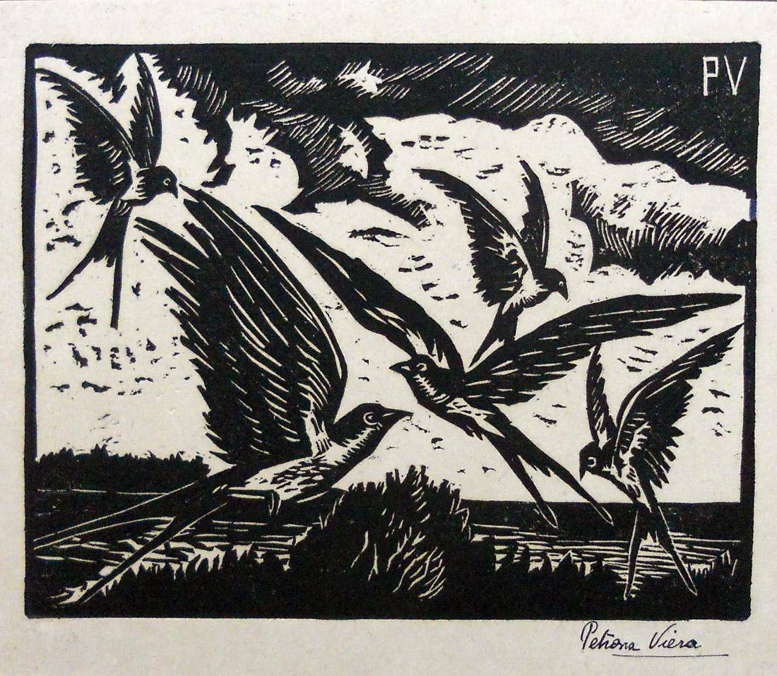 Obra ampliada: Pájaros - Petrona Viera