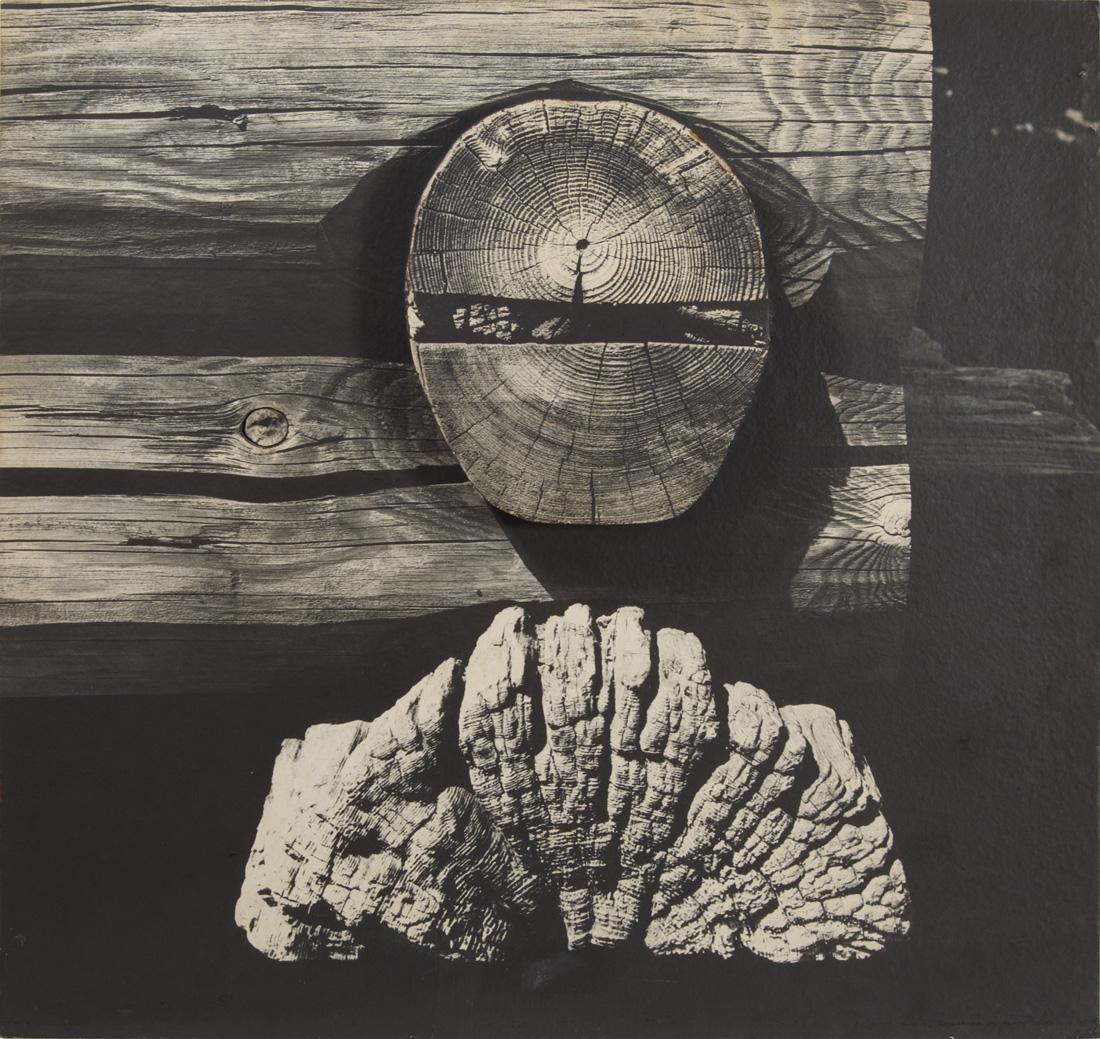 Obra ampliada: Muro vikingo - Alfredo Testoni