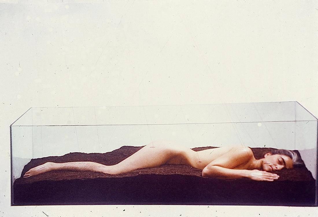 Obra ampliada: La vida es un flujo y reflujo - Cecilia Vignolo