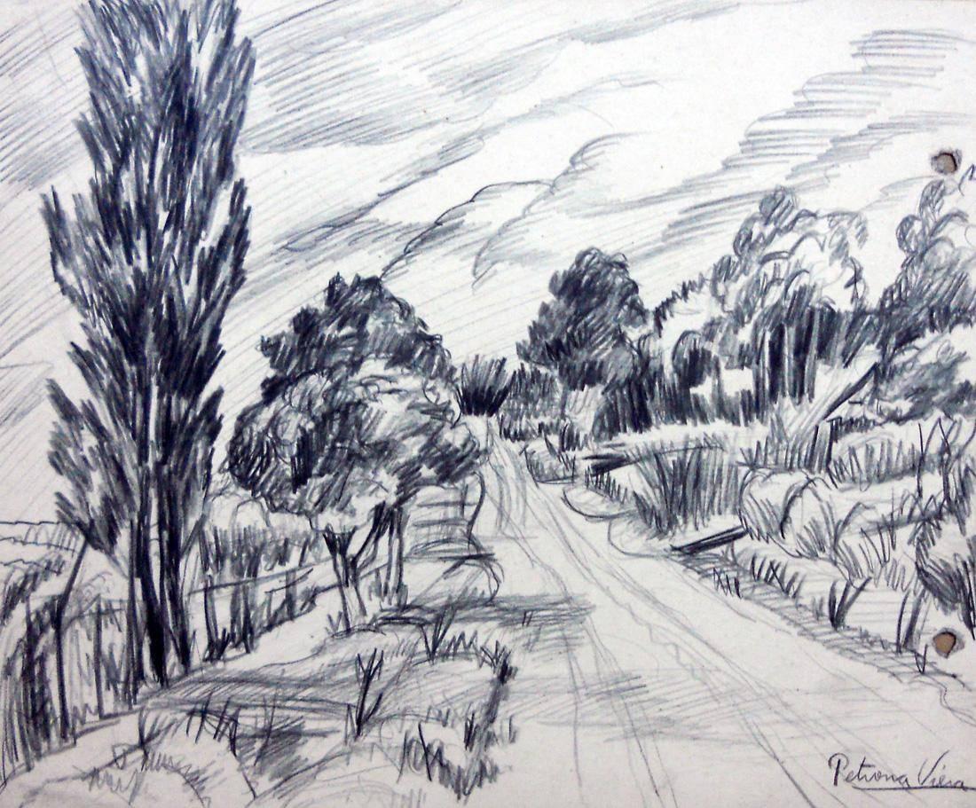 Obra ampliada: Árboles, camino y calle - Petrona Viera