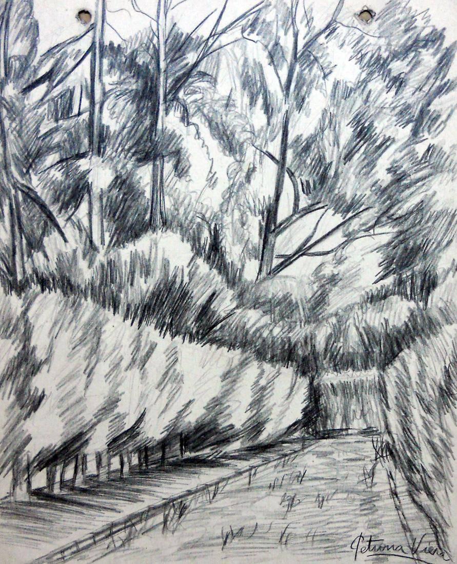 Obra ampliada: Quinta Capurro - Petrona Viera