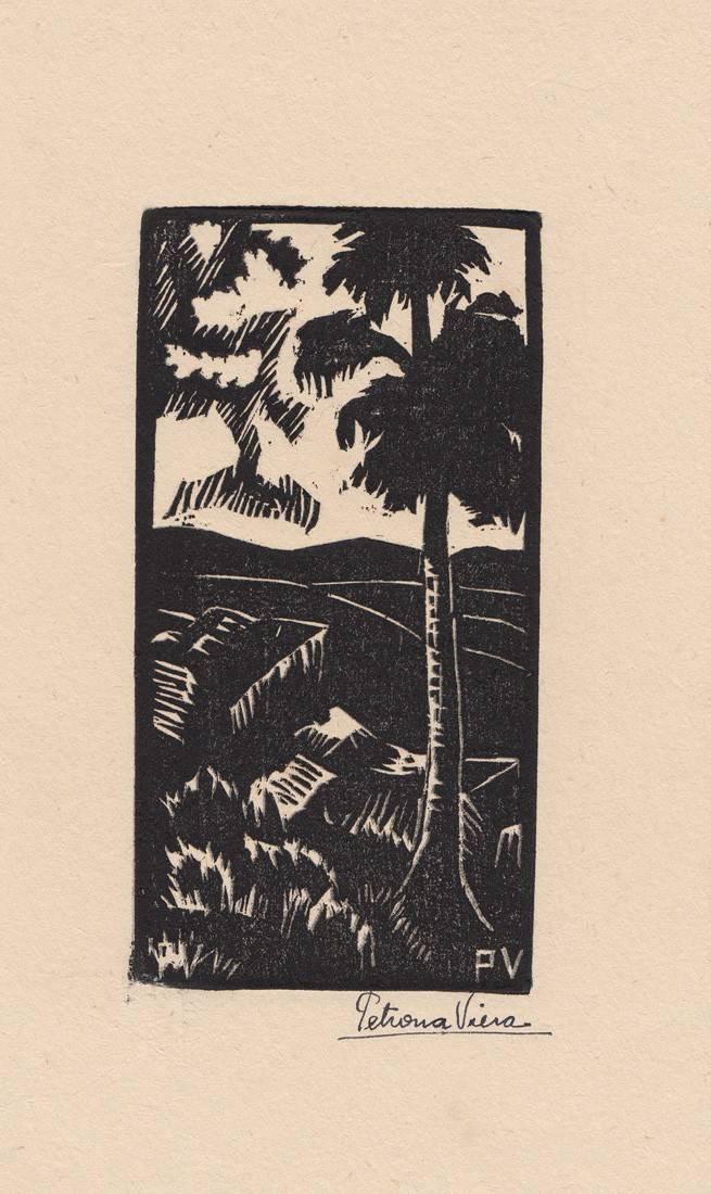 Obra ampliada: Árbol y piedras - Petrona Viera